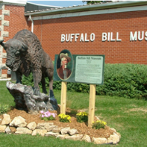 cropped-buffalo_280.png